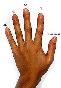 Finger Chart